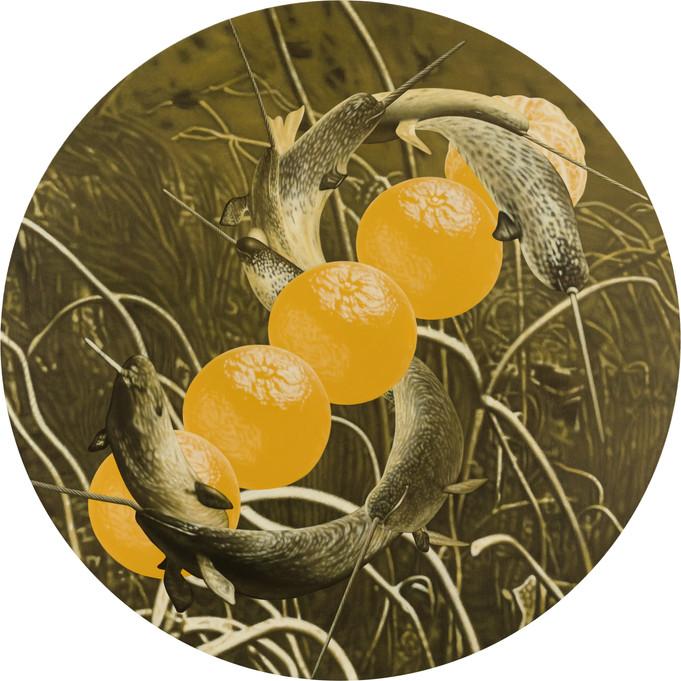 鯨鯨鯨鯨鯨…、五橘 04 / Whale, Whale, Whale, Whale, Whale…(Truly, Truly, Truly, Truly, Truly…), Five Oranges  (Rich) 04
