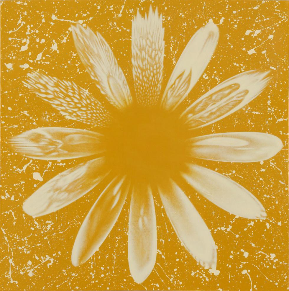 解酒圖 金色紀念版 I / The Flower of Sobering Up Gold Edition I