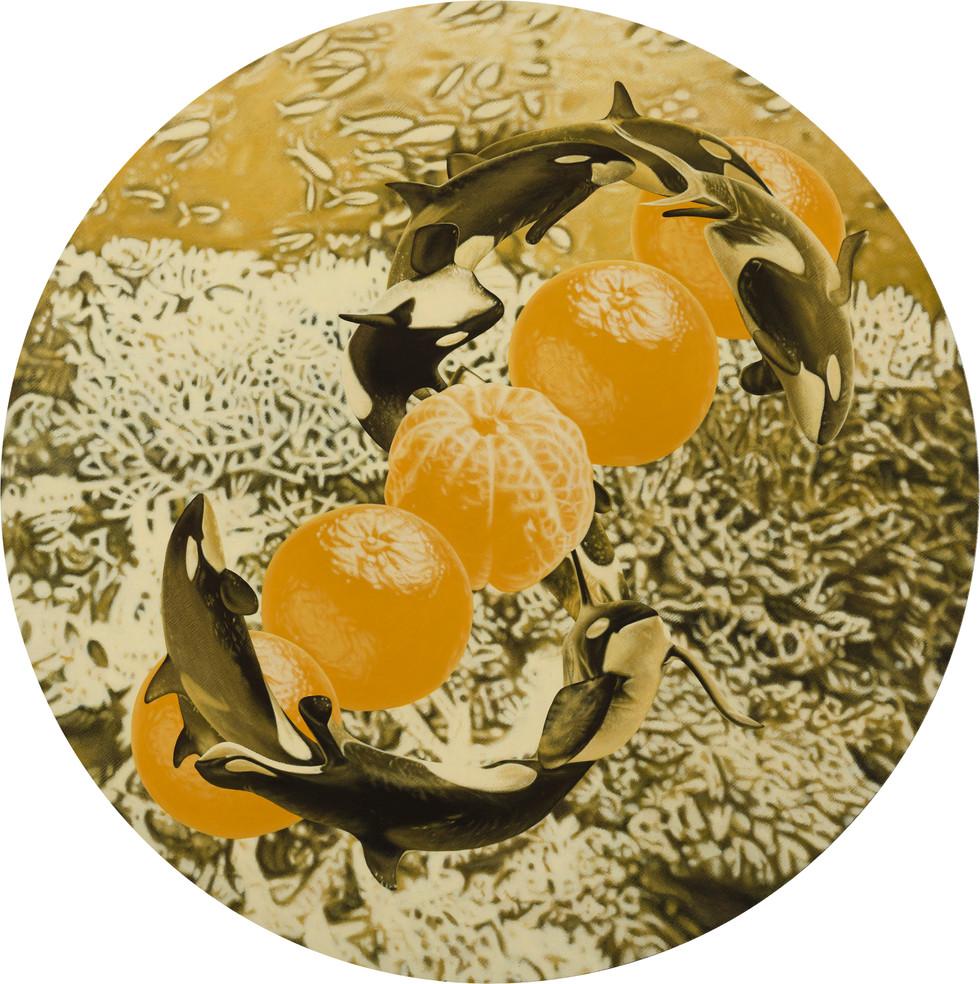 鯨鯨鯨鯨鯨…、五橘 02 / Whale, Whale, Whale, Whale, Whale…(Truly, Truly, Truly, Truly, Truly…), Five Oranges  (Rich) 02
