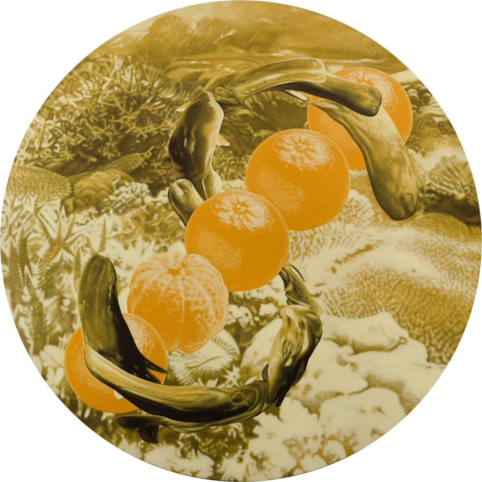 鯨鯨鯨鯨鯨…、五橘 03 / Whale, Whale, Whale, Whale, Whale…(Truly, Truly, Truly, Truly, Truly…), Five Oranges  (Rich) 03