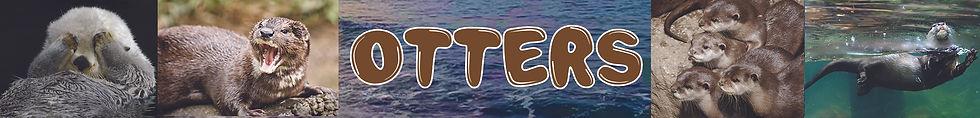 new otters banner.jpg
