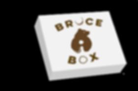 bruce box mockup.png