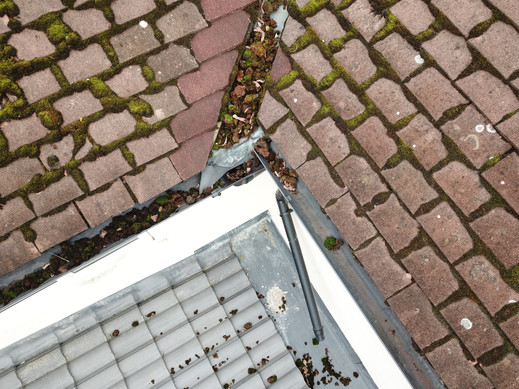 Domestic Gutter Inspection