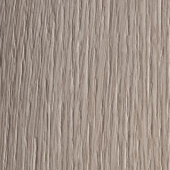 4519 ALV Дуб Гамбургский (древесный)
