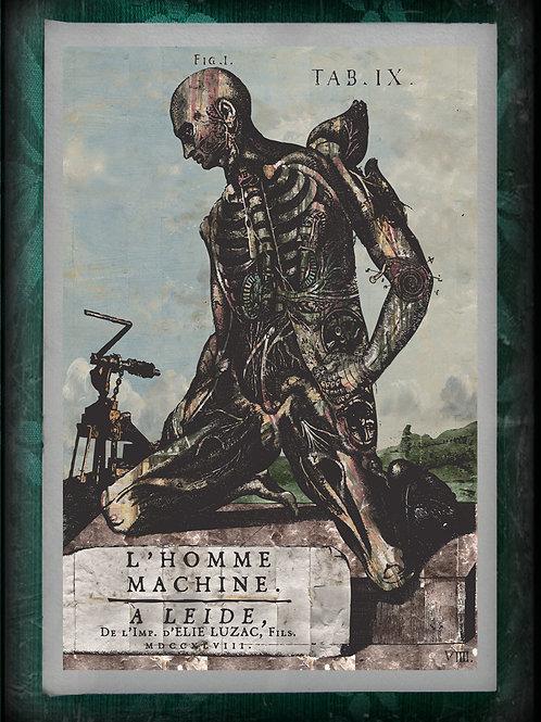 L'Homme Machine. Anatomical Steam Punk Man. Titlepage. 1748