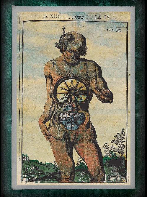 L'Homme Machine. Anatomical Steam Punk Man. Tab XIII. 1748