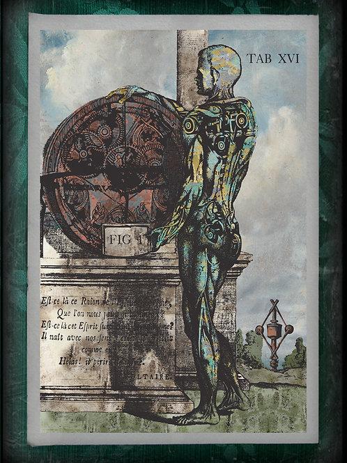 L'Homme Machine. Anatomical Steam Punk Man. Tab XVI. 1748