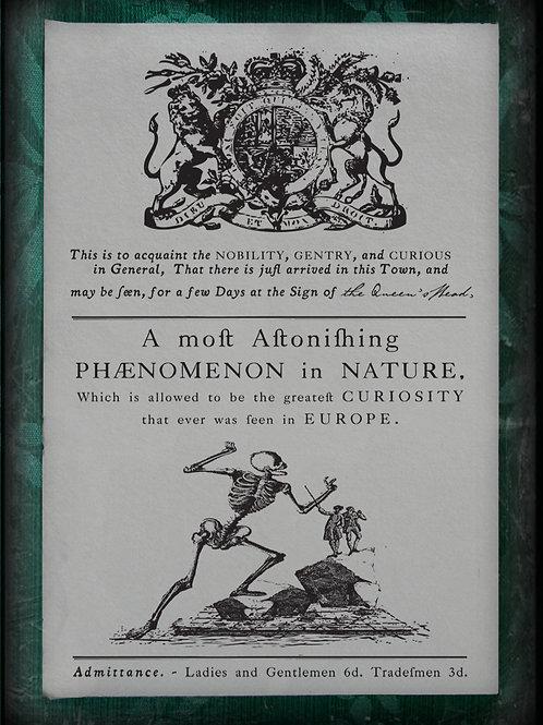 A Most Astonishing Phenomenon in Nature II. 1787