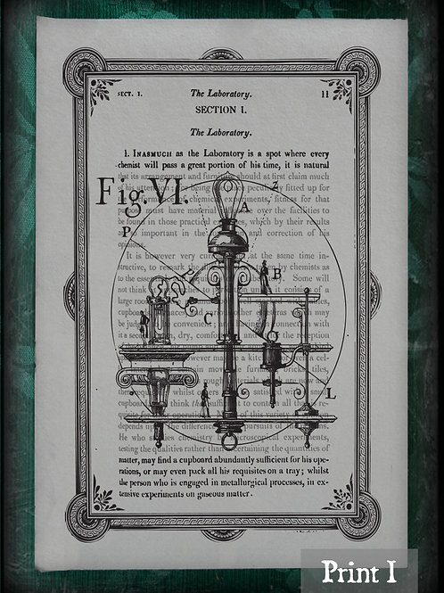 Elements of electro-biology, The voltaic mechanism of man. I-IV. 1849