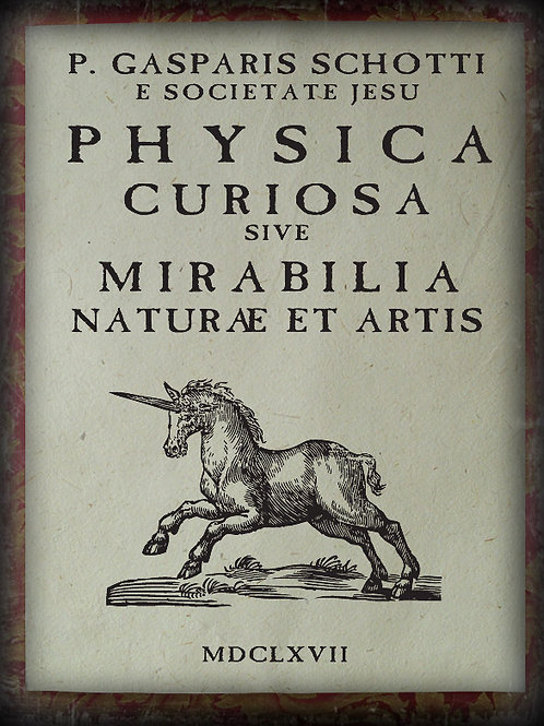 Unicorn. Physica Curiosasive. 1667