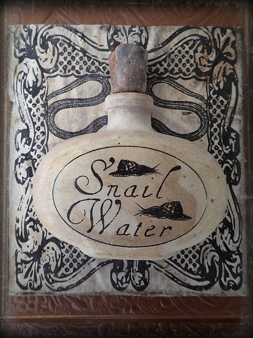 Snail Water Bottle & Wooden Plaque