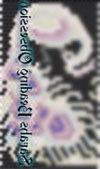 Albino Pearl Peacock Flow Pen Cover id 16509