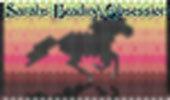 Racing the Sun Stallion Pen Cover id 16304