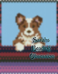 Red Border Collie Panel id 6228