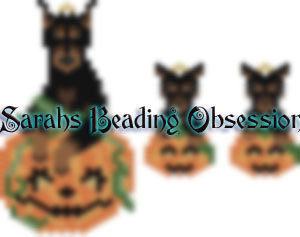Doberman Pumpkin Set id 14782
