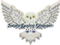 Snowy Owl Hugs Redesign id 15507