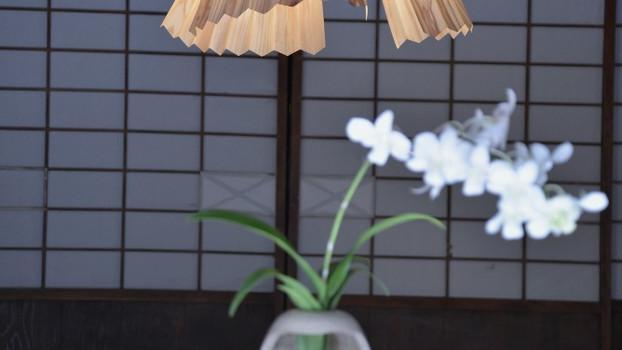 Hani lamp