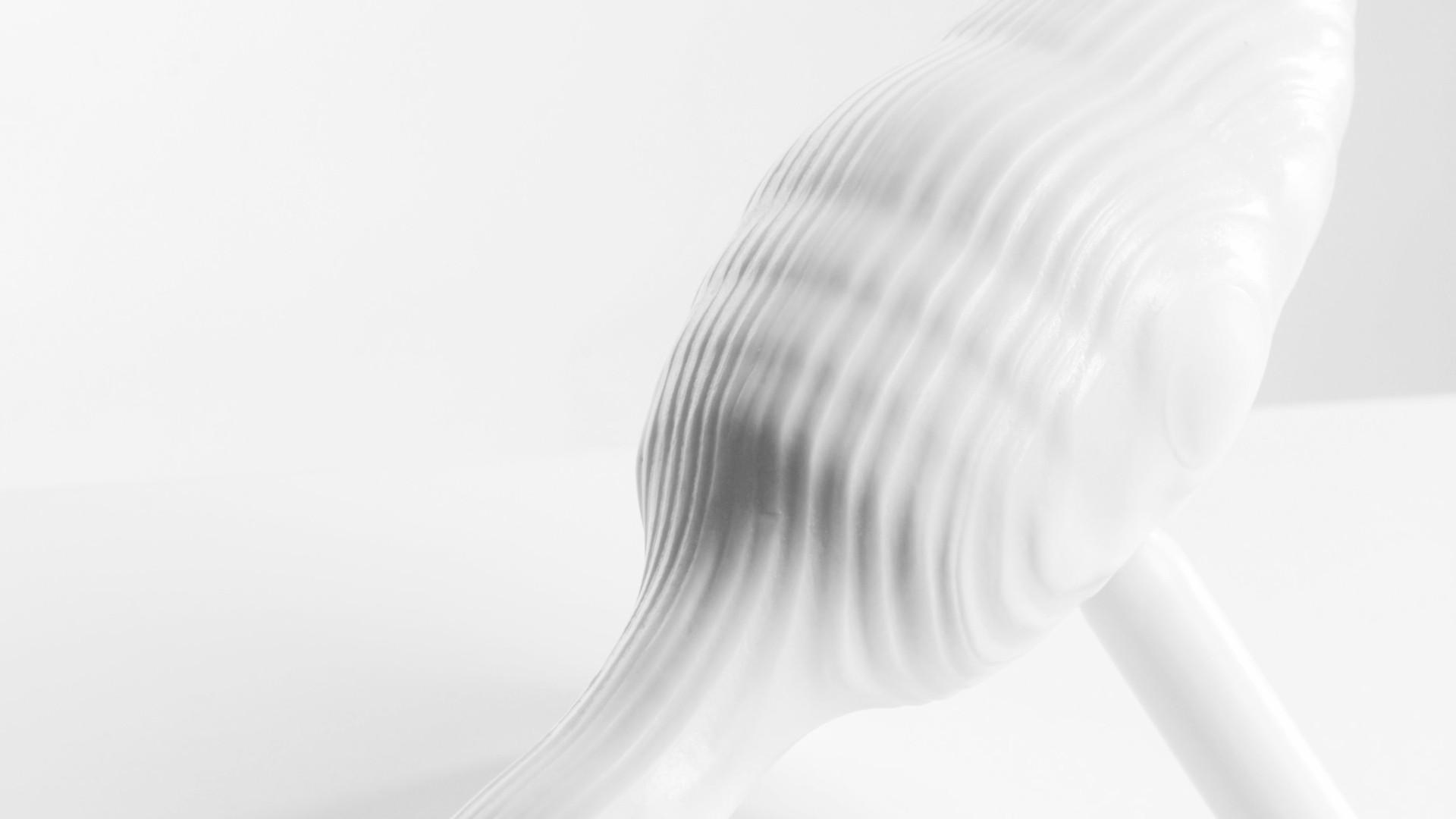 Sagi 2_porcelain