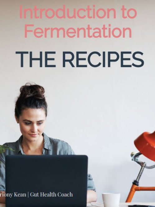 Introduction to Fermentation - THE RECIPES