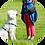 Thumbnail: ÖTK Hundezertifikat-Intensivkurs