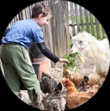 Working Farm - vor Ort Teilnahme