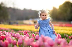 TulipMinis©GabriellaCosta-2.jpg