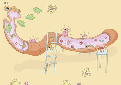 Intestine slides