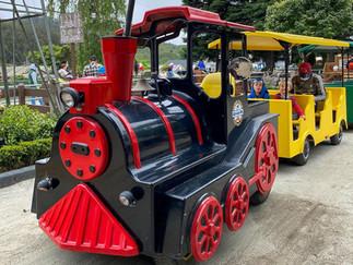 Train Rides at Lemos Farm