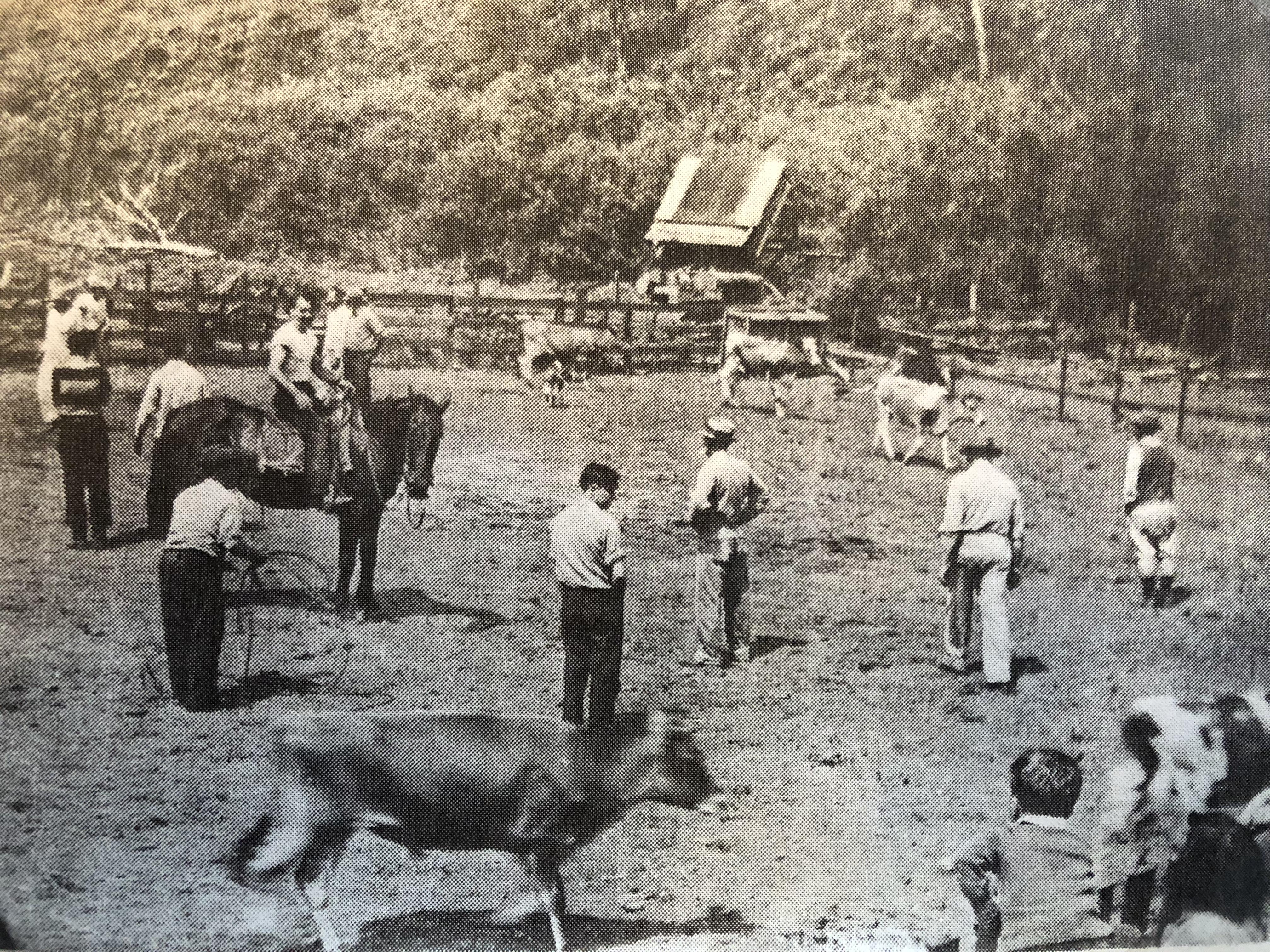 Lemos Farm 1942