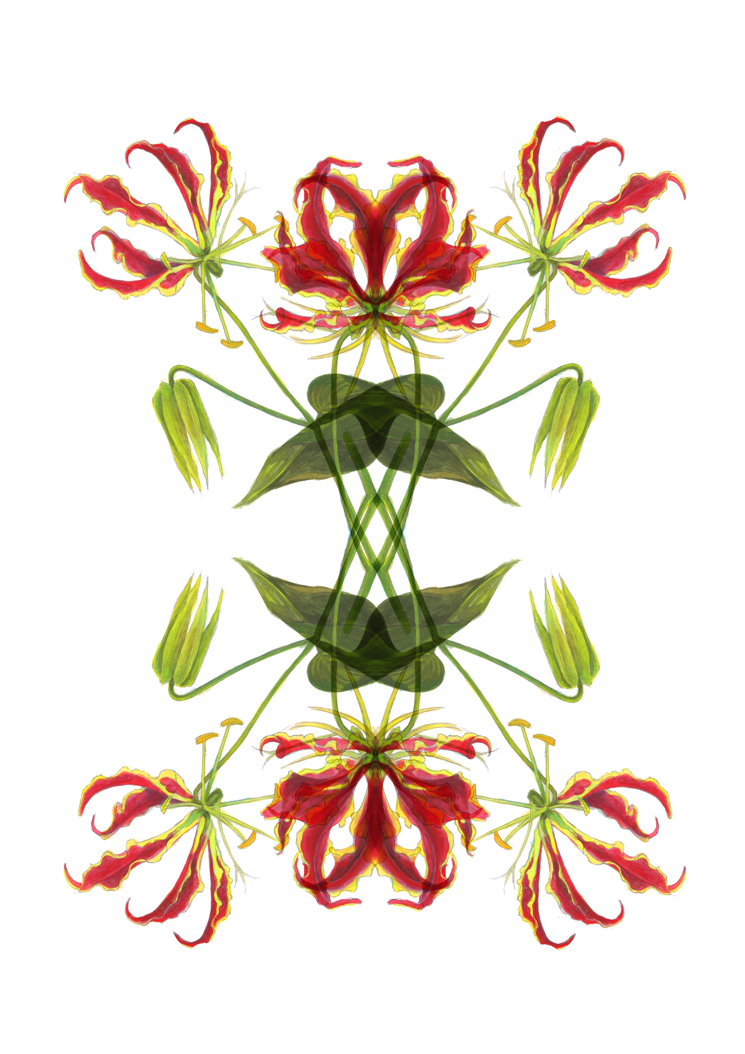 plants59