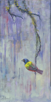 Mossy Perch Painted Bunting