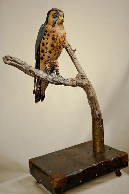 American Kestrel Sculpture
