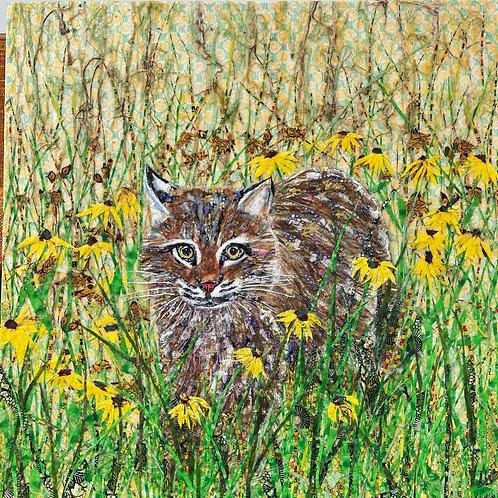 "Bobcat & Black-eyed Susans, 30 x 30"" Collage"