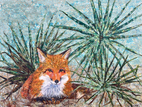 Red Fox and Saw Palmetto