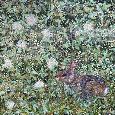 Marsh Hare in Blackberry Patch