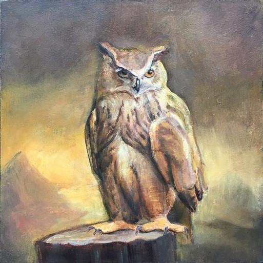 David_Molesky_owl#62, oil on panel, 6x6
