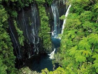 Mauricio y Rincón, una forma distinta de vivir África