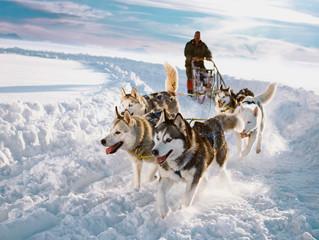 Laponia Sueca, un lugar fantástico