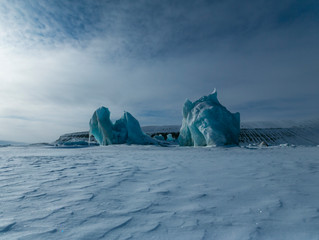 Svalbard, el hogar de los osos polares