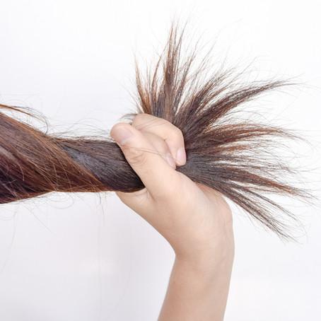 Frutos rojos, aliado infalible para tu cabello