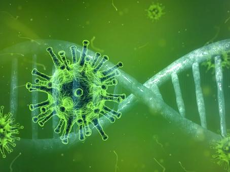 Kinesiska forskare testar C-vitaminbehandling mot coronavirus