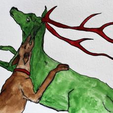 Cerf mordu par un chien