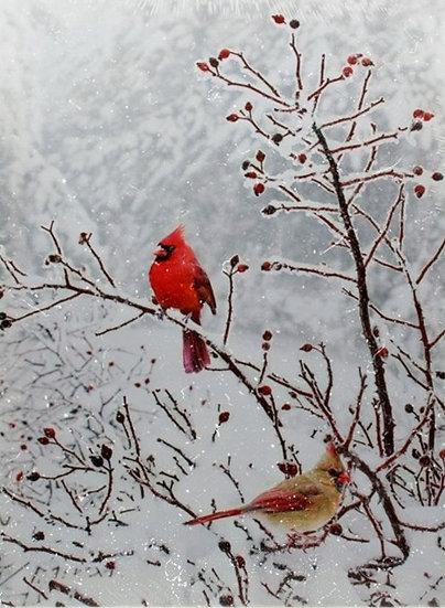 Bild Vogel rot oder Rotkelchen Led+Timer 30x40cm