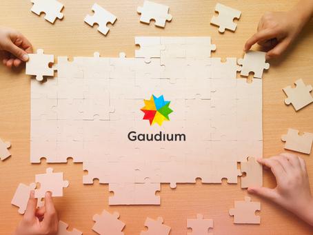 Hierarquia de marcas: quais são as partes que compõem a Gaudium?