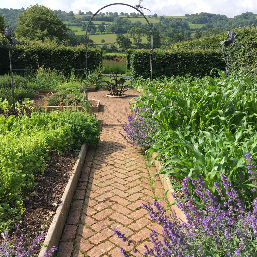 Far reaching views from kitchen garden