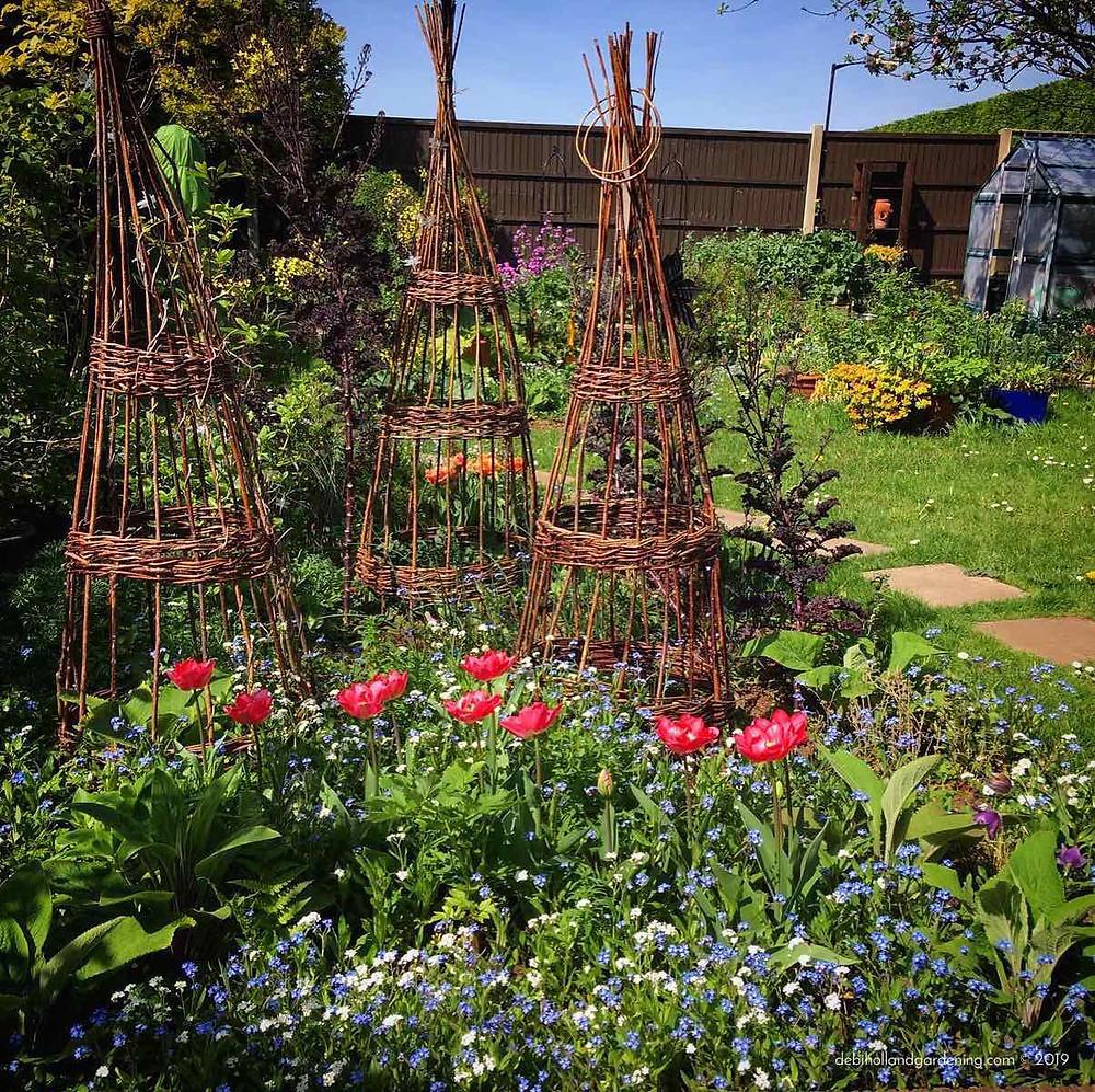Mid April in my garden
