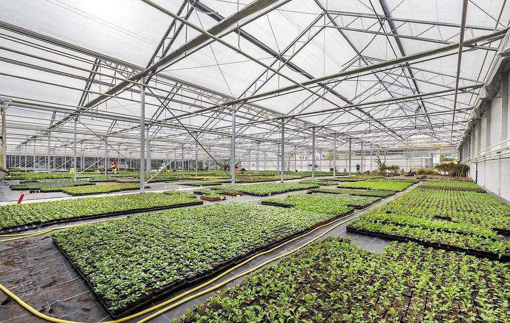 New Municipal Horticulture Centre, Annecy. Photo c/o Futura A