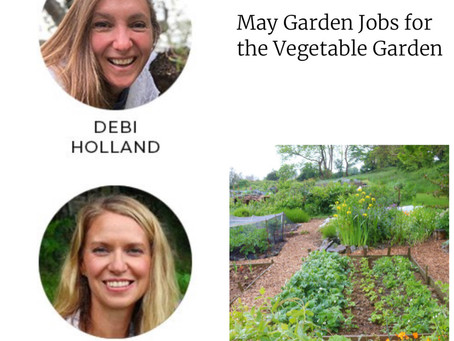 May Garden Jobs for the Vegetable Garden