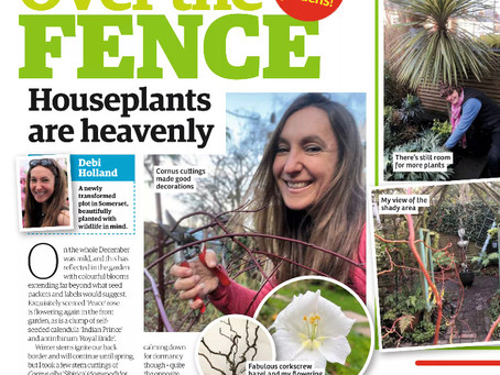 Garden News January 2021