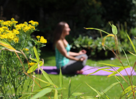 Mindfulness for Gardeners